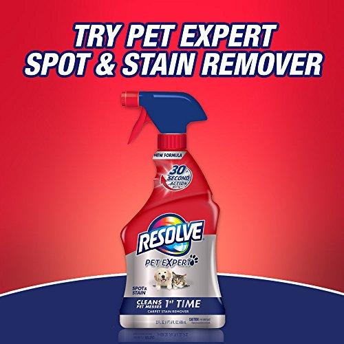 Resolve Carpet Spot & Stain Remover, 22 fl oz Bottle, Carpet Cleaner - 7