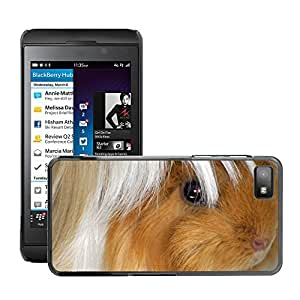 Hot Style Cell Phone PC Hard Case Cover // M00131037 Guinea Pig Peruvians Buff White // BlackBerry Z10