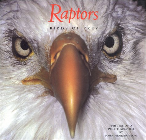Raptors: Birds of Prey - Bird Voyage Pet