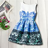 YANYANGirlDress Girl's Daily Going Out Holiday Floral Galaxy Jacquard Dress, Cotton Acrylic All Seasons Sleeveless Vintage Cute Casual Blue