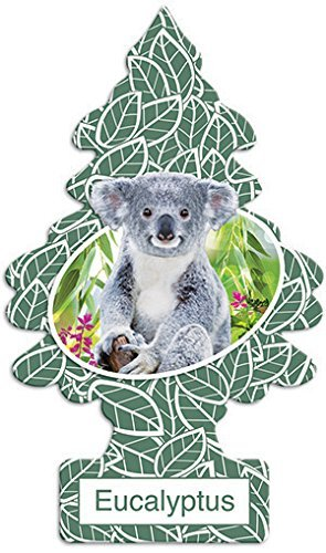 Little Trees Eucalyptus Air Freshener (Pack of - Eucalyptus Air Freshener