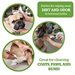 Pogi's Grooming Wipes – 100 Hypoallergenic Pet Wipes for Dogs & Cats – Biodegradable, Fragrance-Free, Deodorising Dog…
