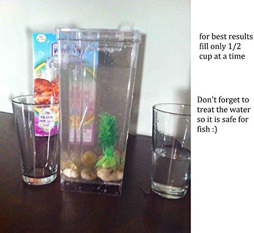 Cleaning Fish Bowl - My Fun Fish Kid's Self Cleaning Beta Aquarium Bowl Tank by Unknown