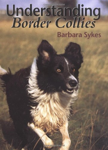 - Understanding Border Collies