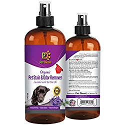Pet Stains & Enzyme Cleaner Spray – Dog or Cat Odor Eliminator & Pet Stain Remover For Carpet – Best Organic Lavender With Tea Tree Oil - 4 FL Oz - By Pet Diesel