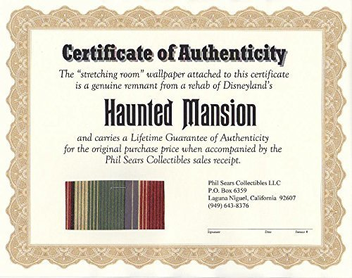 Actual Piece of Disneyland Haunted Mansion Stretching Room Wallpaper