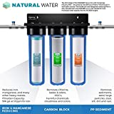 iSpring WGB32BM 3-Stage Whole House Water