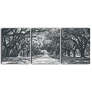 Tree Wall Art – 3-Piece Unframed Black & White Prints, Original Photography Work – Contemporary Artwork – Relaxing…