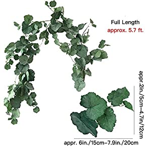 Aisamco 2 Pcs Artificial Hanging Begonia Leaves Vines Twigs Fake Silk Begonia Plants Leaves Garland String 5.7 Feet in Green for Indoor Outdoor Wedding Decor Greenery Wreath 2