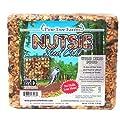 Case Pack of Pine Tree Farms Nutsie Seed Cakes, 2.75 lbs. each