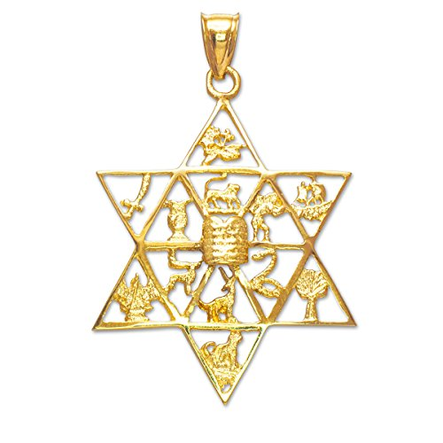 Solid 14k Yellow Gold Jewish Star of David Charm 12 Tribes of Israel Pendant