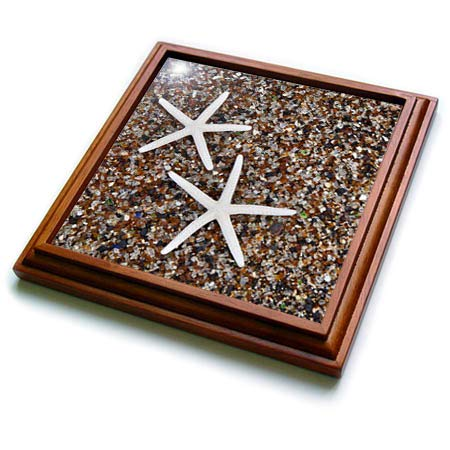 3dRose Danita Delimont - Seashells - USA, Hawaii, Kauai. Starfish skeletons on Glass Beach. - 8x8 Trivet with 6x6 ceramic tile (trv_314788_1)