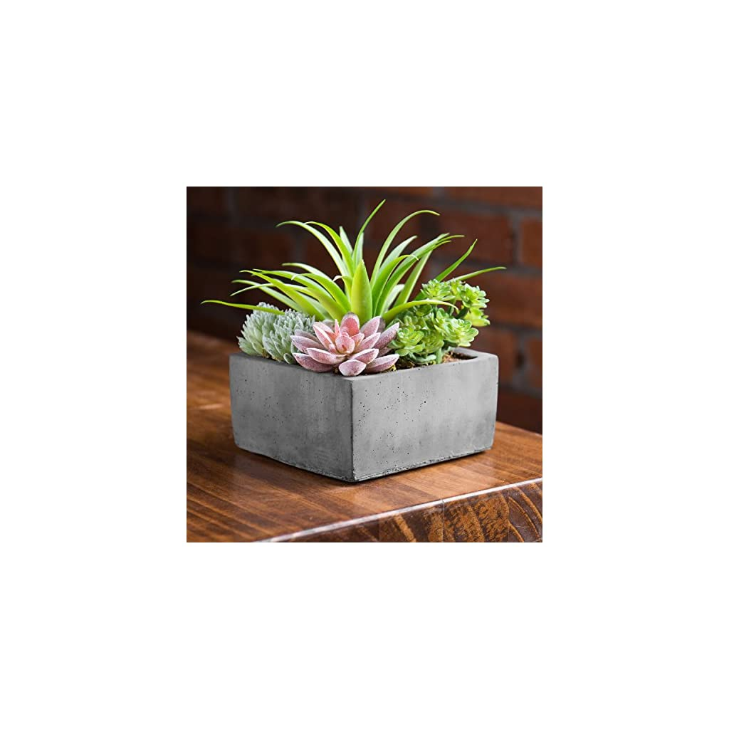 MyGift-Faux-Potted-Assorted-Succulents-Plants-in-Grey-Planter