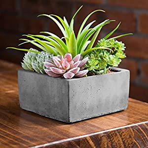 MyGift Faux Potted Assorted Succulents Plants in Grey Planter 50