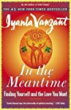 In the Meantime( Finding Yourself and the Love You Want)[IN THE MEANTIME][Paperback]
