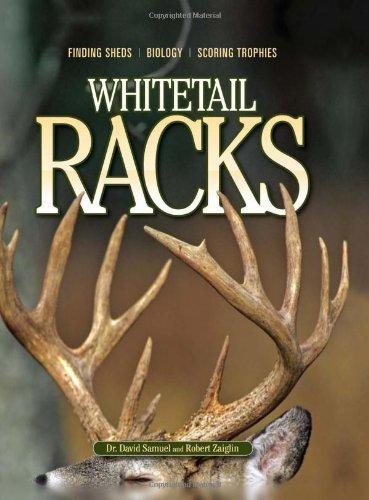 Whitetail Racks - Rack Whitetail