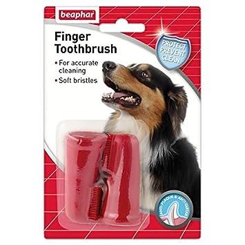 Beaphar Cepillo de Dientes Dedo para Perros y Gatos 2 por Paquete: Amazon.es: Jardín