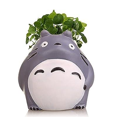 YOURNELO Ceramic Mini Totoro Plant Desktop Flower Pot Succulent Planters Vase (Daze): Garden & Outdoor