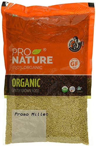 Pro Nature 100% Organic Proso Millet, 500 g by Hindustan Mart