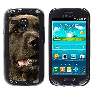 Vortex Accessory Carcasa Funda PARA SAMSUNG GALAXY S3 MINI i8190 ( NOT FOR S3 ) For - Flat Coated Retriever Dog Black