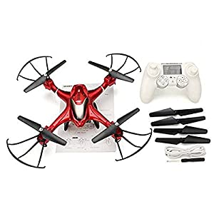 RC Drone SJ R/C X300-2 4CH 6 Axis 2.4G - RC Quadcopter One Key To Auto-Return Headless Mode 360°Rolling RC Quadcopter Remote (Red) from LightInTheBox