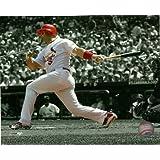 Albert Pujols St. Louis Cardinals Spotlight 8x10 Photo