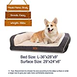 best Orthopedic Dog Bed