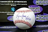 Autograph 190377 Inscribed Hof 06 Hall of Fame Cubs Cardinals Braves Bruce Sutter Autographed Baseball