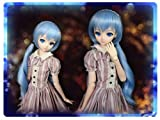 Doll wig braids twin tails Snow Blue 9 to 9.5 inches Dollfie Dream DD/MDD Super Dollfie SD size