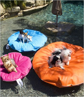 Pet Pool and Deck Lounger Tangerine (LG 47″), My Pet Supplies