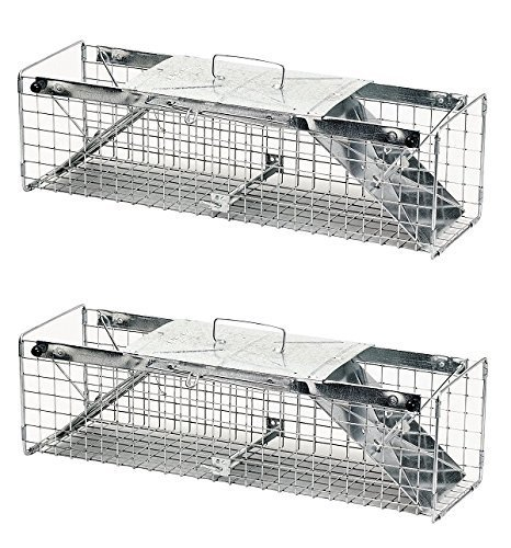 Havahart 1030 Live Animal Two-Door Rabbit, Squirrel, Skunk, and Mink Cage Trap (Pack of 2) ()