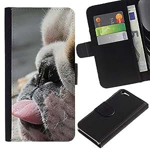 iBinBang / Flip Funda de Cuero Case Cover - Perro Raza Cute Puppy - Apple Iphone 6 4.7