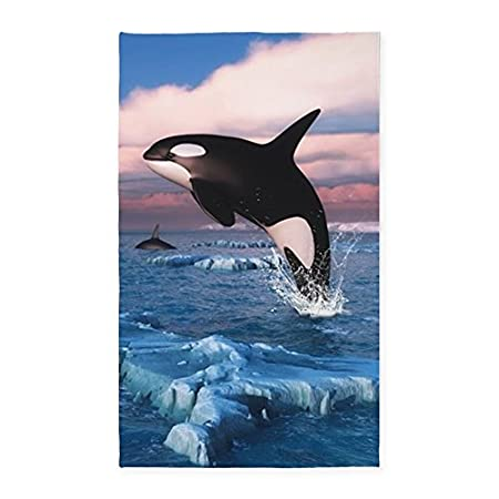 51NOhyRS43L._SS450_ Whale Rugs and Whale Area Rugs