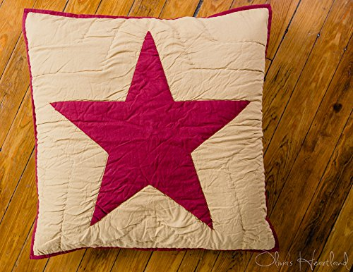 Olivia's Heartland Burgundy and Tan Quilted Star Euro Sham