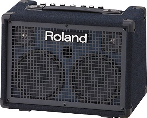 Roland Battery-Powered Stereo Keyboard Amplifier, 30 watt (15W + 15W) (KC-220)