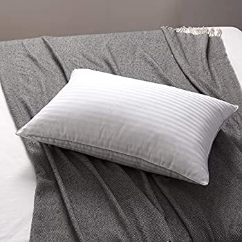 Amazon Com L Lovsoul White Goose Down And Feather Bed