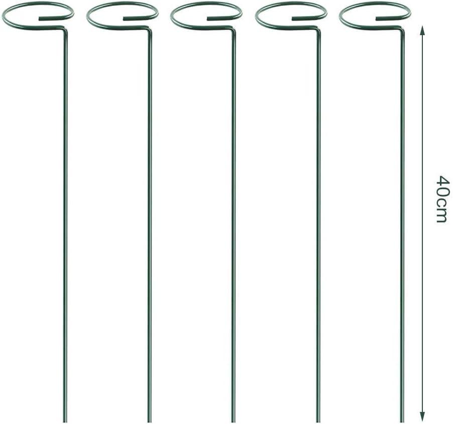 Garten-St/ütz-Ringe F/ür Tomaten Top-Ring Pflanzenst/änder Metall-Stab Blumen-Zweig Pflanzen-St/ängel Goodde 5 X Pflanzenst/ützst/äbe Blumen-St/ängel Aufrechter Pflanzen-Anbau
