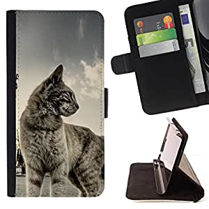 DEVIL CASE - FOR Sony Xperia M2 - Cat Shorthair House Pet Blue Grey Cute Kitten - Style PU Leather Case Wallet Flip Stand Flap Closure Cover