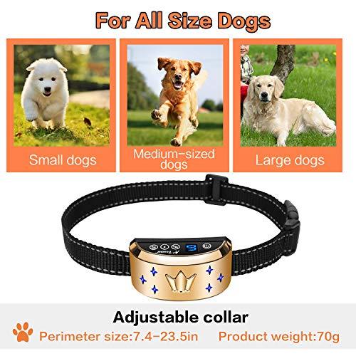 Buy bark collar best