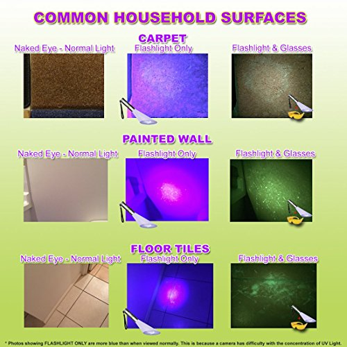 UV-Flashlight-Pet-Urine-Detector-by-Doggone-Pet-Products-Blacklight-Finds-Dry-Dog-Cat-Stains-on-Carpets-Hard-Floors-Paint-Alkaline-Batteries-Included-With-12-LED-Ultra-Violet-Blacklight