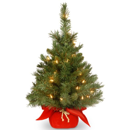 National Tree 2 Foot Majestic Fir Tree with 35 Clear Lights in Red Cloth Bag (MJ3-24RDLO-1) by National Tree Company