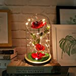 URBANSEASONS-Beauty-and-The-Beast-Rose-Enchanted-RoseRed-Silk-Rose-and-Led-Light-with-Fallen-Petals-in-Glass-Dome-on-Wooden-Base-for-Valentines-Day-Wedding-Anniversary-Mothers-Day-Birthday-Party
