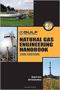 Natural Gas Engineering Handbook Free Download