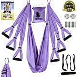 Zenyogi Aerial Yoga Swing – Inversion/Trapeze/Hammock - Ultra Strong Inversion Sling Including Instructional E-Book Installation Hardware Adjustable Daisy Chain with Carrying Case (Purple)