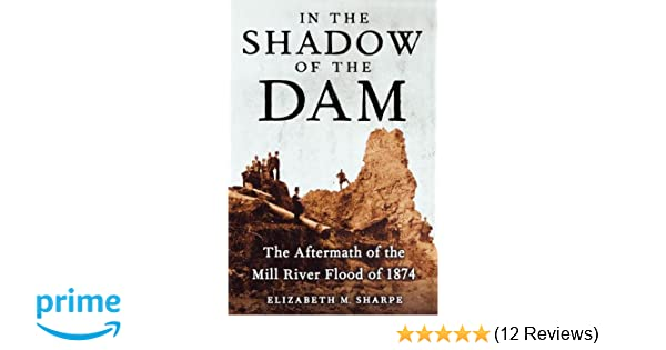 In The Shadow Of The Dam The Aftermath Of The Mill River Flood Of