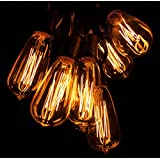 50 Foot ST40 Lantern Edison Patio String Lights with Clear Bulbs and Black wire