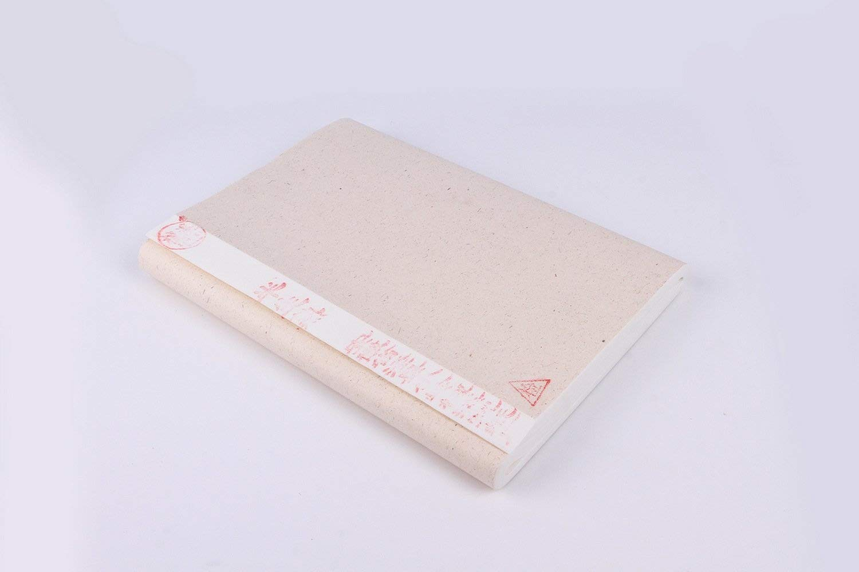 Riso Semi trattati, Xuan carta cinese, per calligrafia giapponese e pittura, 100 fogli, confezione da 34 cm x 70 cm ESTN
