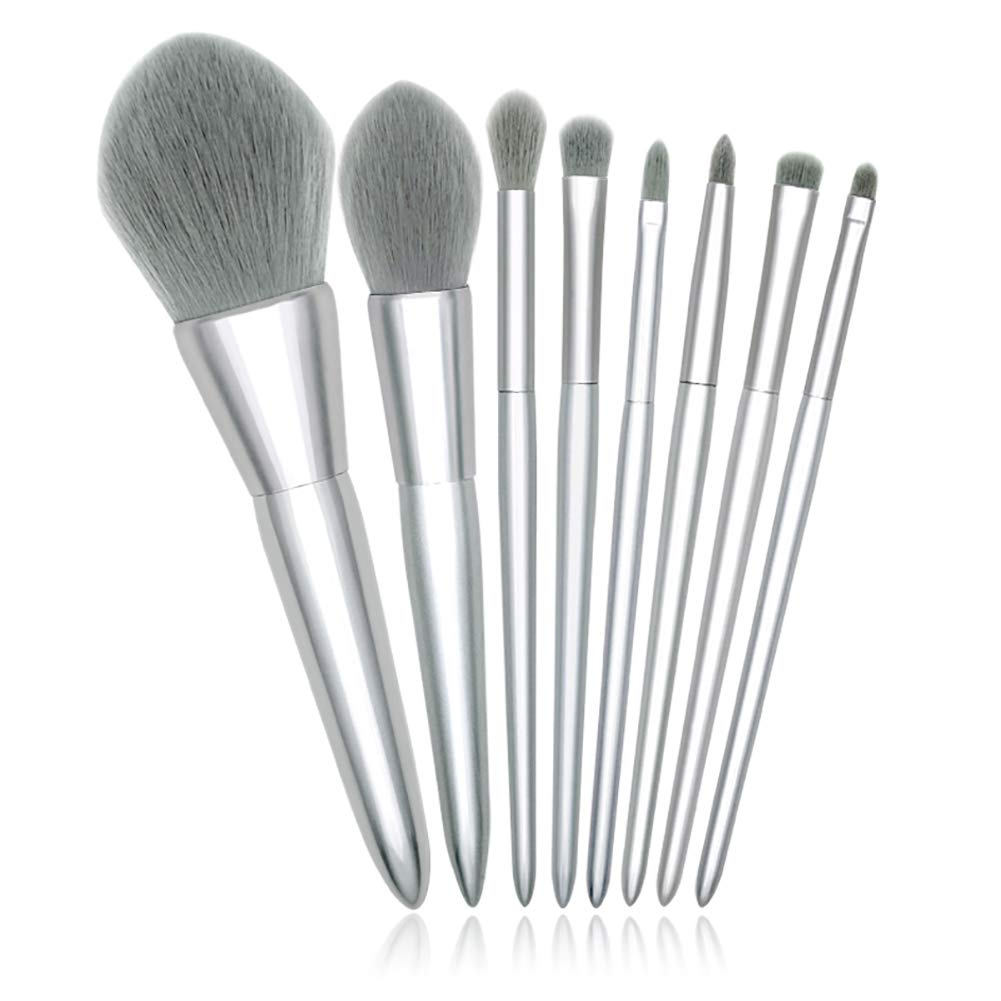 8 Makeup Brush Set Professional Cosmetics Brush With Cosmetic Bag For Eye Shadow, Eyebrows, Eyeliner Brush, Mixed (silver) 51NPr0AYawL