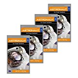 Astronaut Ice Cream Sandwich Freeze Dried Food 4 Packs