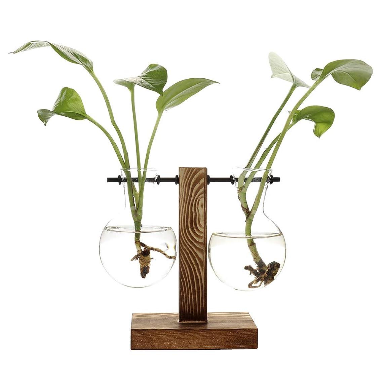 クリエイティブスクラブ試してみるIvolador Wall Hanging PlantテストチューブFlower Bud花瓶の木製スタンド最適な水耕植物ホームガーデン結婚式装飾